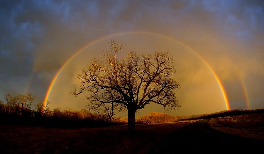 rainbow at elam bend - Rainbow Picture